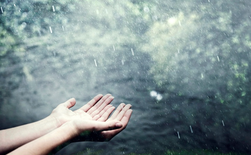 The Ruthless Rain